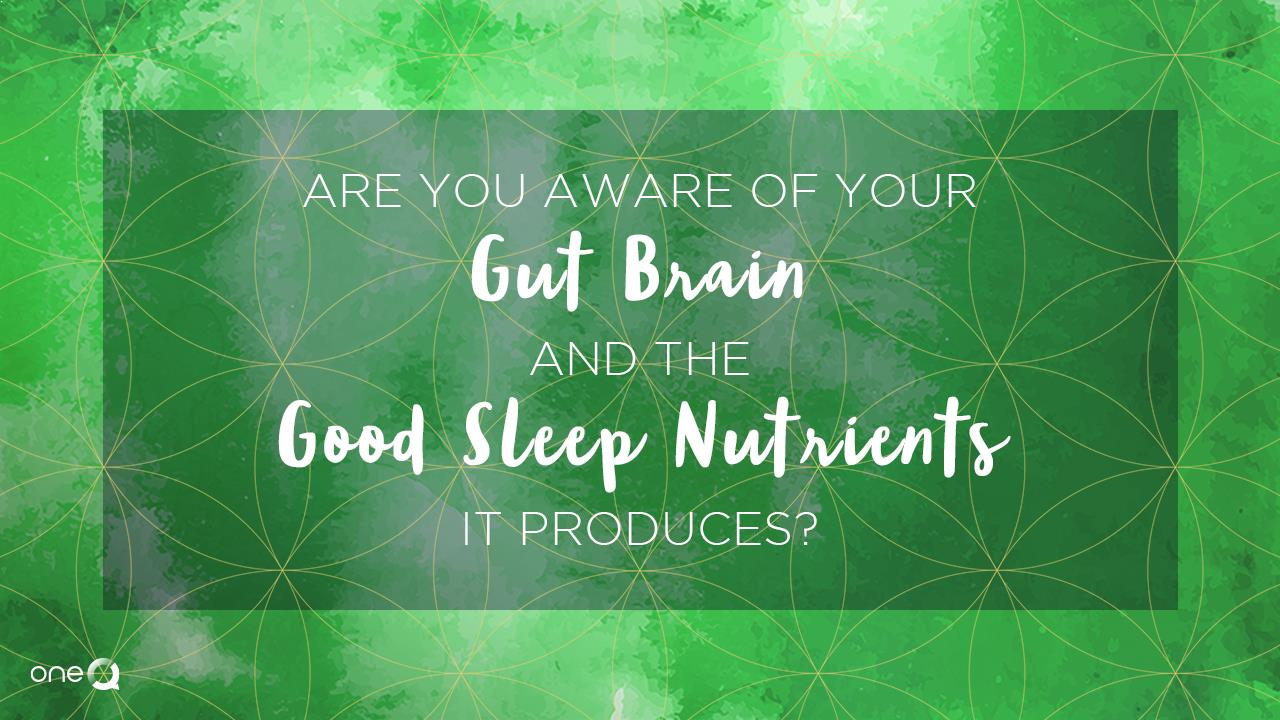 Are You Aware of Your Gut-brain and The Good Sleep Nutrients it Produces? - Simply One Question - One Q